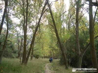 Hoces del Río Duratón - Sepúlveda;club senderismo madrid gente joven grupos de senderismo en madr